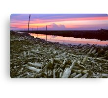 Dying Earth Canvas Print