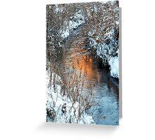 Cub Creek Reflections Greeting Card