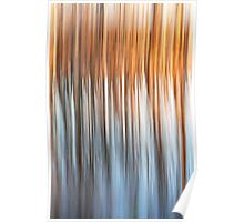 Cottonwood Reflections on Water Poster
