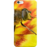Merodon Hoverfly iPhone Case/Skin