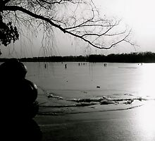 Frozen Sunset (B&W) by Valerie Rosen