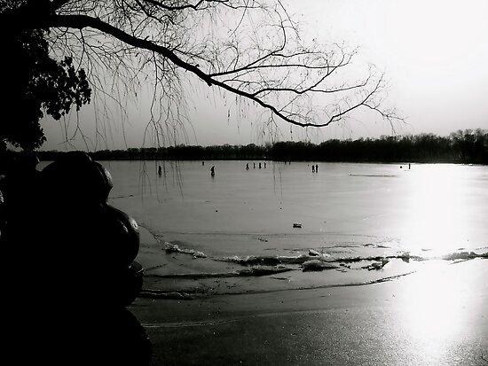 Frozen Sunset (B&W) by Valerie Rosen