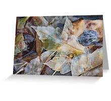 Wet Leaves Greeting Card
