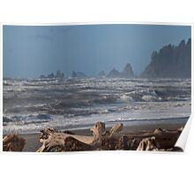 Rialto Beach, Washington State Coast Poster