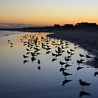 Wrightsville Beach by Forrest L Smith