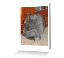 Mad Red-Eyed Rabbit Greeting Card