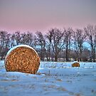Winter Bales by Patrick Hickey