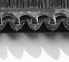 on the tiles - Chinese Roofing Tiles by Mark Bolton