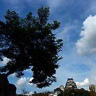 Hemiji Castle by Erik Holladay