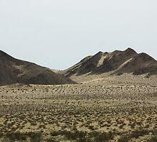 Rocky Desert - California by xuyichi