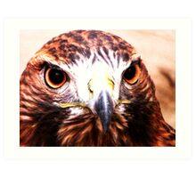 Andi- The Golden Eagle Art Print