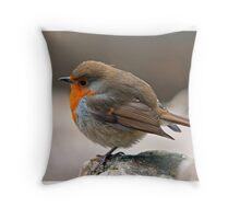 Fluffed up Robin Redbreast Throw Pillow