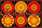 Kaleidoscope by Jan  Tribe