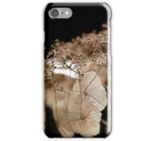 My Love Has Gone iPhone Case/Skin
