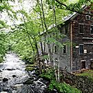 The Mill on Stevens' Brook by T.J. Martin