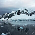 Lemaire Channel, Antarctica by Robert Elliott