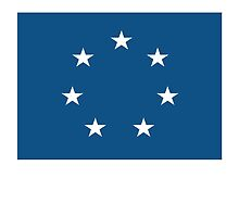 American Flags, Jack of the CSA, USA, Navy, 1861 to 1863, America, Americana by TOM HILL - Designer
