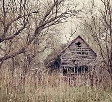 Abandoned Fairy Tale by April Koehler
