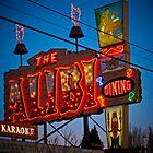the alibi by Bruce  Dickson