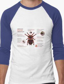 Infographic: Mexican redknee tarantula  Men's Baseball ¾ T-Shirt