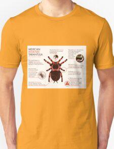 Infographic: Mexican redknee tarantula  Unisex T-Shirt
