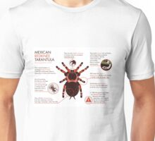 Infographic: Mexican redknee tarantula  Unisex T-Shirt