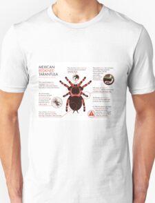Infographic: Mexican redknee tarantula  T-Shirt