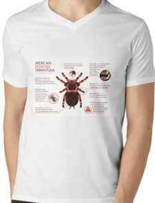 Infographic: Mexican redknee tarantula  Mens V-Neck T-Shirt