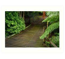 Wooden Bridge, Stringers Creek,Walhalla Art Print
