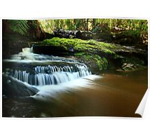 Relapse Creek , West Takone ,nor west Tasmania, Australia Poster