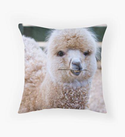 Funny Face - Alpaca Zoodoo wildlife park Throw Pillow