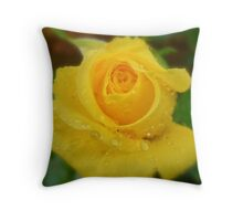My Heart is Full of Raindrops. Throw Pillow
