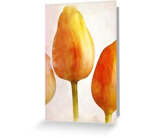 Tulips (Card) Greeting Card