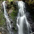 Liffey Falls by Sprinkla
