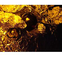 california gold rush Photographic Print