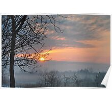 Winter trees at sunrise Poster