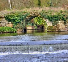 Old Stone Arch by Nigel Donald