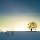 Winter evening by mekea