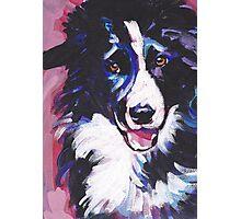 Border Collie Bright colorful pop dog art Photographic Print