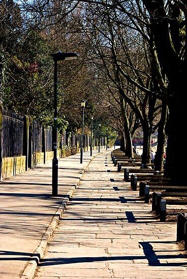 Walkway by Trevor Kersley