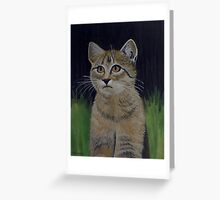 Mister Whiskers Greeting Card