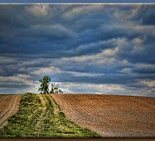 Over the Hill by Sheryl Gerhard