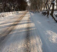 Along the Snow by Duncan Payne