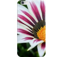 Treasure flower.  iPhone Case/Skin