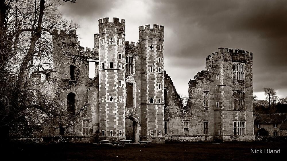 Tudor Nobleman's House - Cowdray, Midhurst by Nick Bland