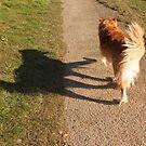 saz with his shadow by xxnatbxx