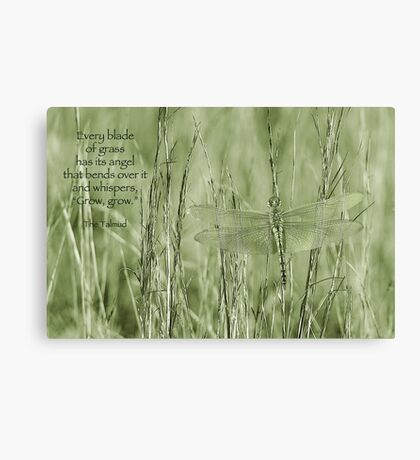 Grow, grow . . . Canvas Print