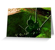 Lucky Scavenger Hunt Greeting Card