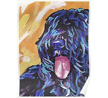 Bouvier Des Flandres Bright colorful pop dog art Poster
