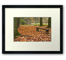 Autumn in the Park 3 Framed Print